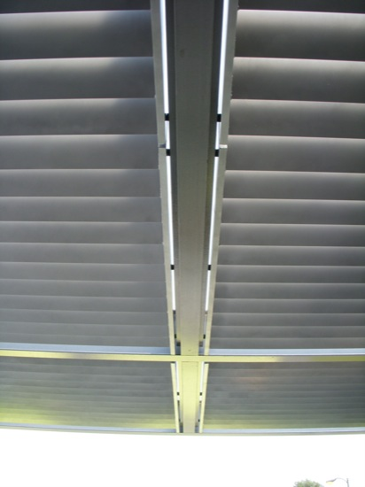 canopy detail