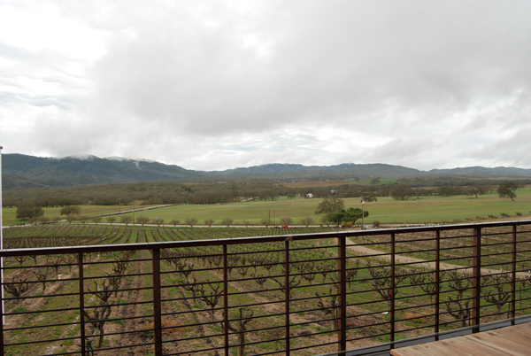 modern winery view