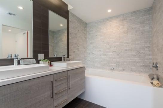 Small_Lot_Subdivision_Bento_Box_master_bathroom.jpg